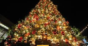10 Most Amazing Celebrity Christmas Trees of Instagram (PHOTOS)